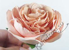 Мастер-класс изготовления английской розы Тамора от Дэвида Остина из фоамирана, пошаговые фото