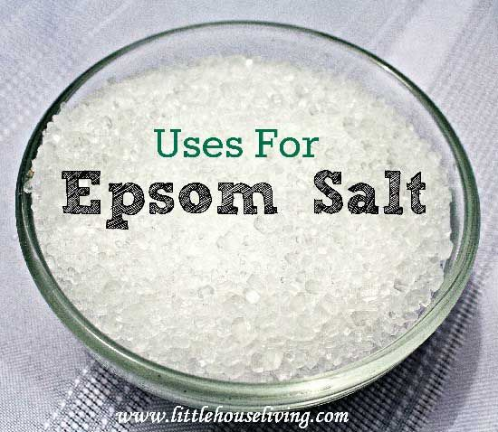 Uses For Epsom Salt In The Home And Garden Landscaping