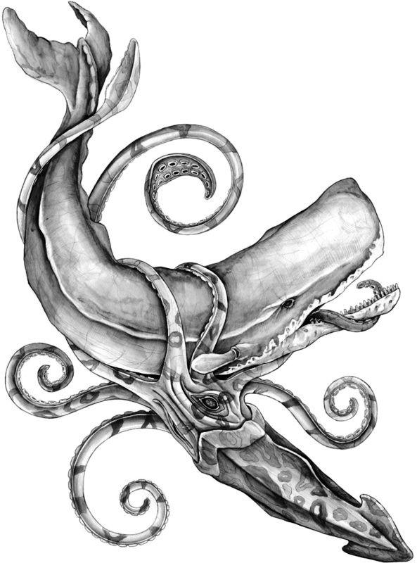 Sperm Whale & Giant Squid