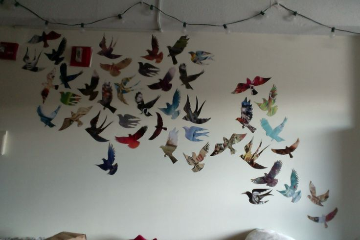 eternal sunshine — bird wall is 90% done! this is what happens when...
