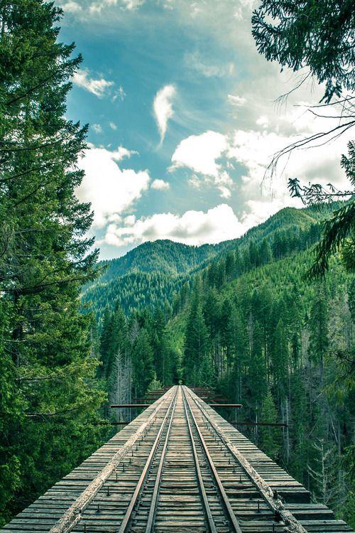 Mountain Rail, The Cascades, Washington photo via selena