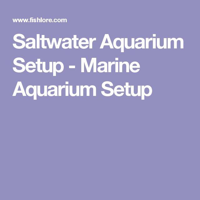 Saltwater Aquarium Setup - Marine Aquarium Setup