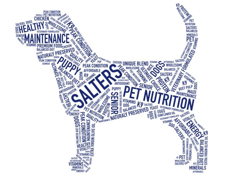 Healthy, nutritious #dog food, affordable and fit for a King. Do you know a #SaltersDog?