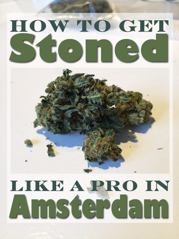 Here's what to expect if you're heading to the Netherlands to get blazed.