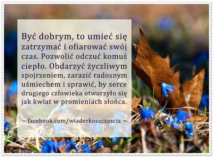 https://www.facebook.com/wiaderkoszczescia/photos/a.407970609263194.95333.407961409264114/609856122407974/?type=1