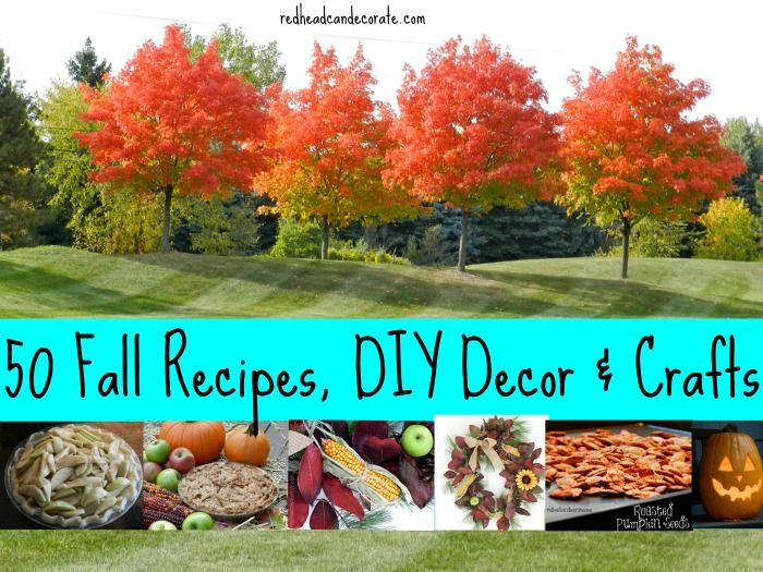 50 Fall Recipes, DIY Decor, and Crafts all in one spot for you to browse.