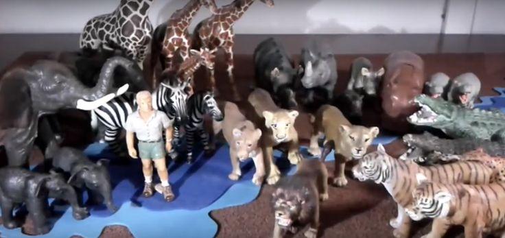 Espero les agrade mi video de los animales de la selva y sus curiosidades. Son videos caseros desarrollados para compartir un poco de mis juguetes.