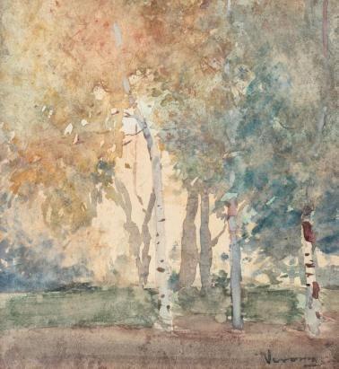 Arthur  Verona - Pădure de mesteceni