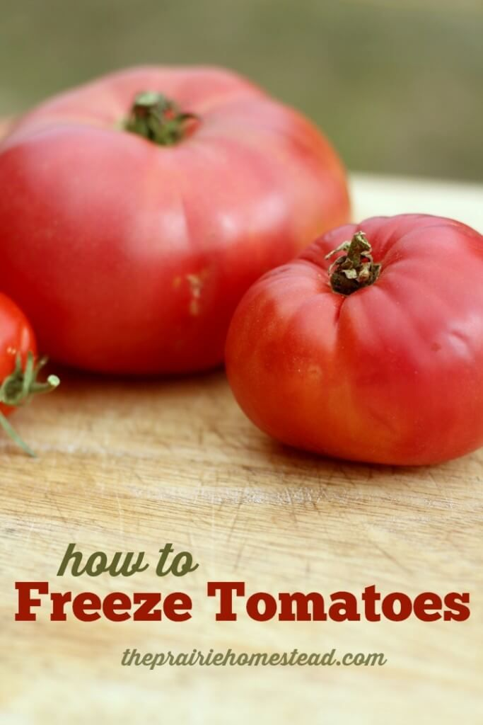 charming how to freeze tomatoes Part - 5: charming how to freeze tomatoes awesome ideas