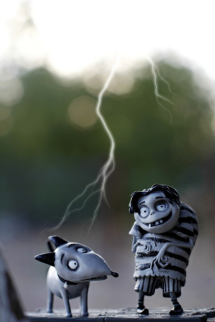 Frankenweenie Edgar & Sparky | My Toy Box | Tim burton ...