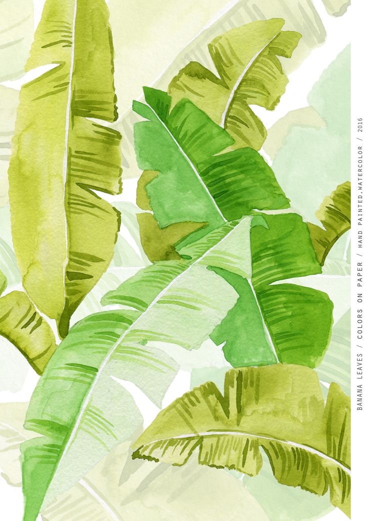 Banana Leaves Pattern / Colors on Paper, Hand Painted Watercolor / 2016