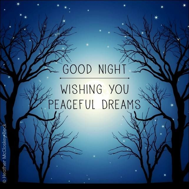 Good Night. Wishing you peaceful dreams