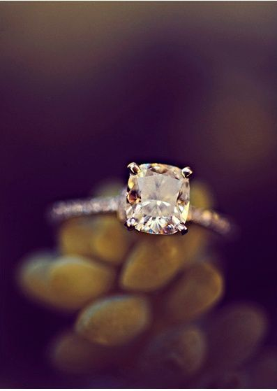 I love a thin, studded band with a simple solitaire. It's the only time I like more than a few diamonds on a ring.