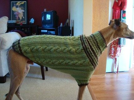 Knitting Pattern For Whippet Coat : dog/ greyhound sweater knitting pattern PDF file ONLY Dog