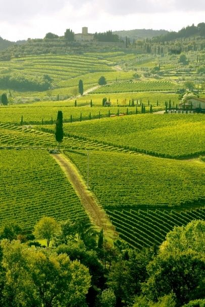 Chianti - Top 10 Travel Destinations in Southern Tuscany. This picture doesn't even look real...it's so breathtaking!