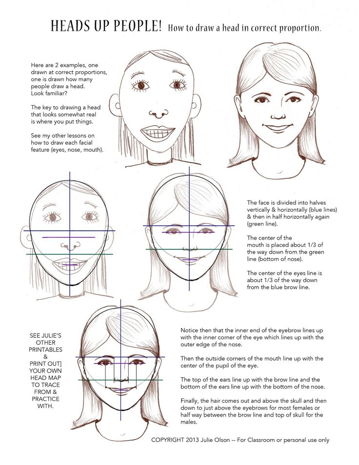 What the heck does an illustrator do?: How to draw a face