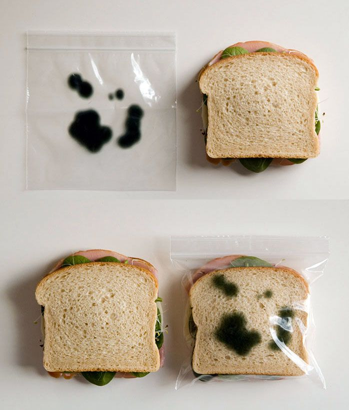 Yanılma!: Sandviç Güvenliği - Küflü Sandviç