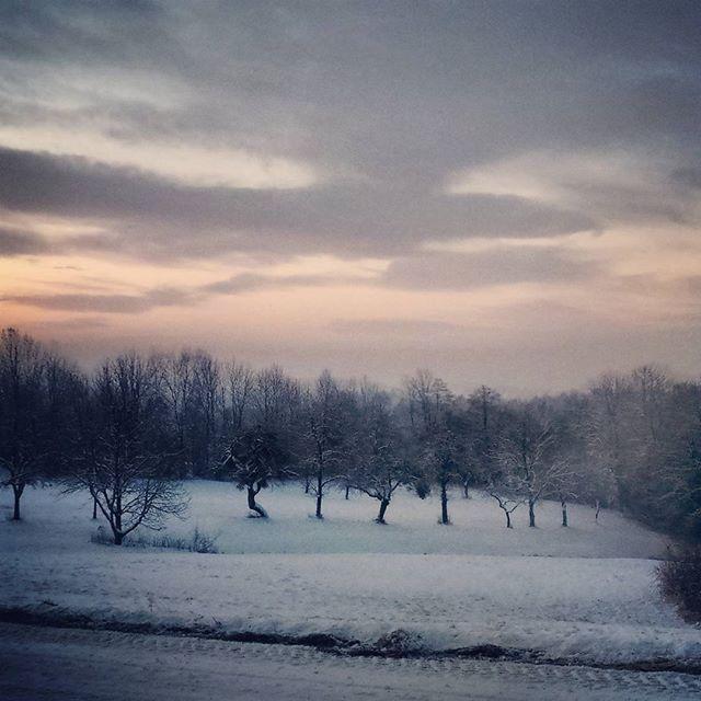 Good morning #winter #muehlviertel #austria