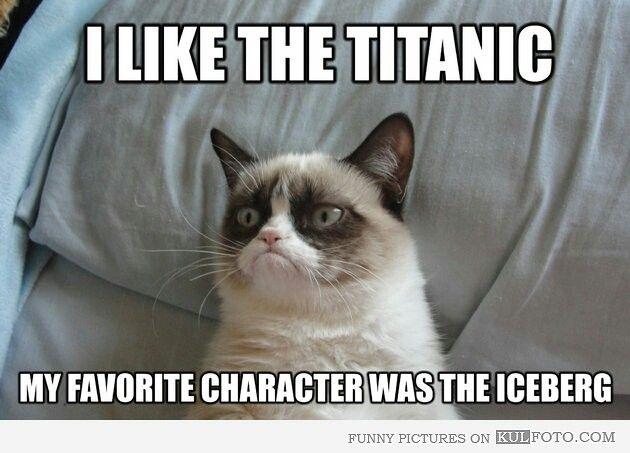 Chat qui ne sourit pas aime le titanic