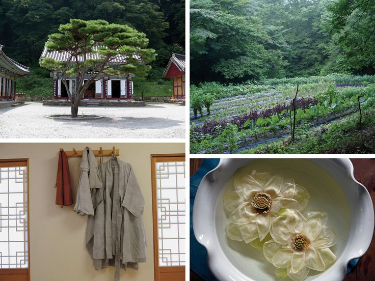 The most exquisite food in the world, say many celebrated chefs, is being made not in Copenhagen or New York, but in a remote temple complex south of Seoul by a 59-year-old Buddhist nun.