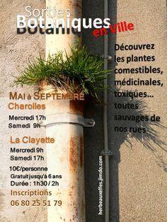 Affiche des sorties Botanique en Ville