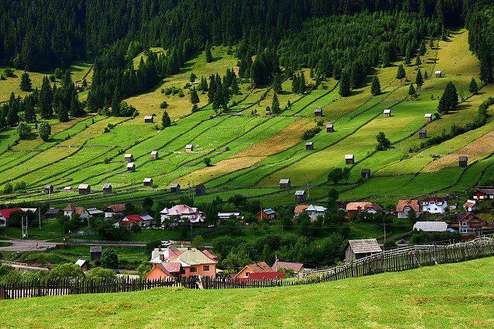 Sadova, Suceava, Bucovina, Romania