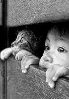 The Nicest Pictures: children and cat