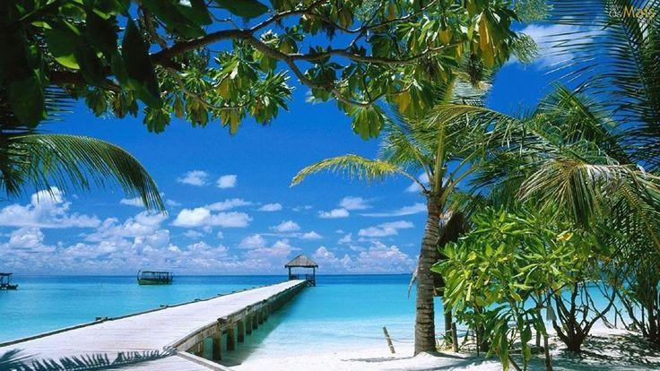A Praia dos meus Sonhos.