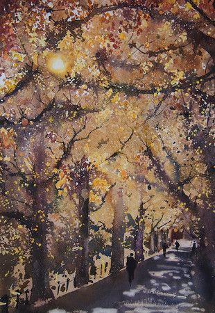 Sunshine and Gingko Trees at Meiji Jingu Gaien, Tokyo