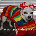Dog Poncho and Sombrero