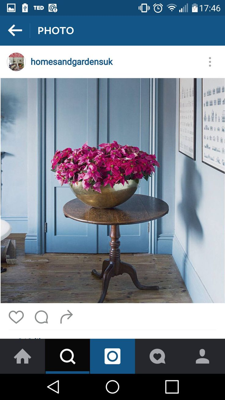 19 best The Dolly Tub images on Pinterest   Decks, Gardening and ...
