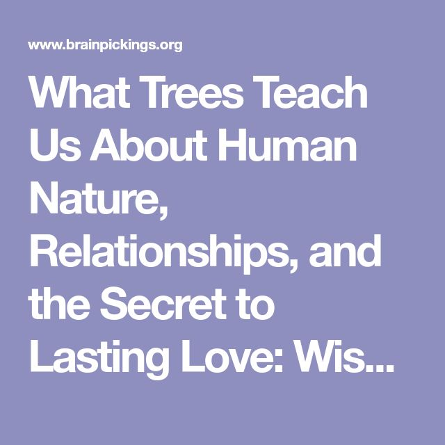 What Trees Teach Us About Human Nature, Relationships, and the Secret to Lasting Love: Wisdom from a 17th-Century Gardener – Brain Pickings