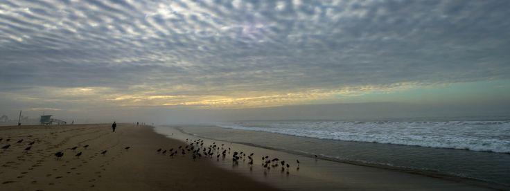 Santa Monica beach.. walk towards Venice Beach, California