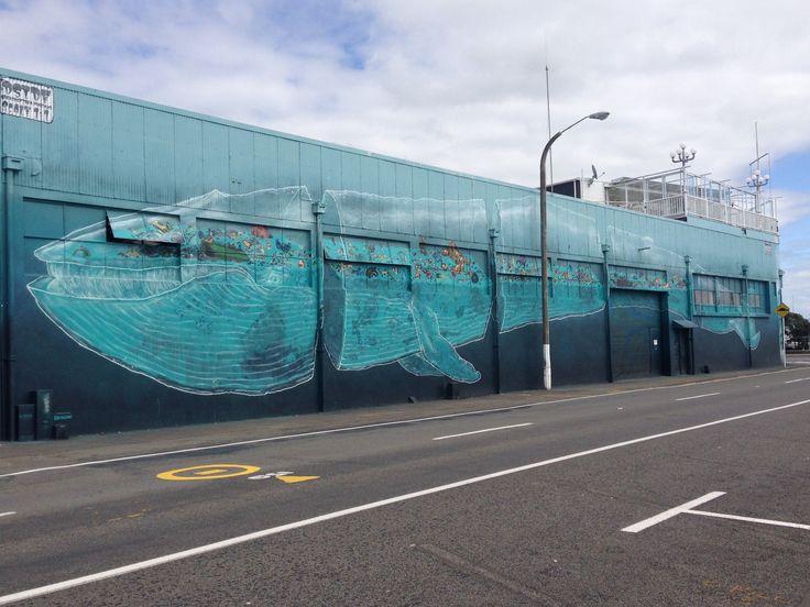 Street art in Napier Seawalls project #2SewTextiles Ocean Awareness