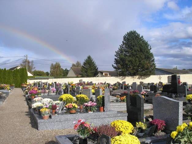 les 25 meilleures idées de la catégorie fleurs de cimetière sur