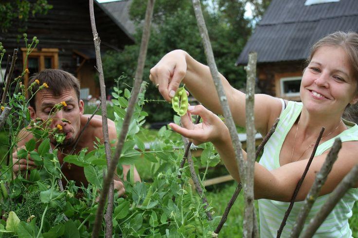 Жизнь горожанки в деревне: (+8)  Лето с детьми. Часть 1