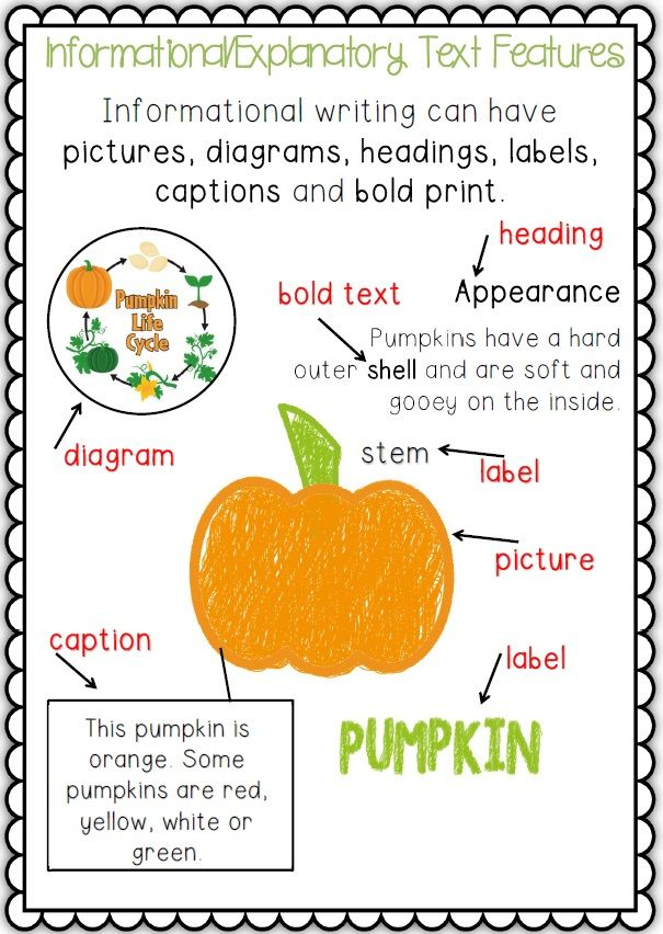 second grade expository writing prompts Introduce and explain the different types of expository writing to your students with our lesson plan view examples, then play a fun game to make sure students understand the concept.