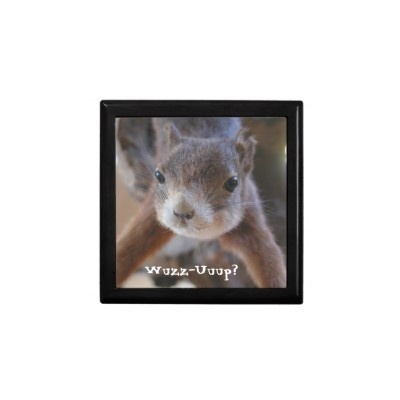 Curious Squirrel Box: Gift Boxes, Gifts Boxes