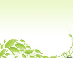 Eco PowerPoint with green leaves and a white background. This template is suitable for any generic ecological presentation that require some eco effect with leaves and business sustainability touch.