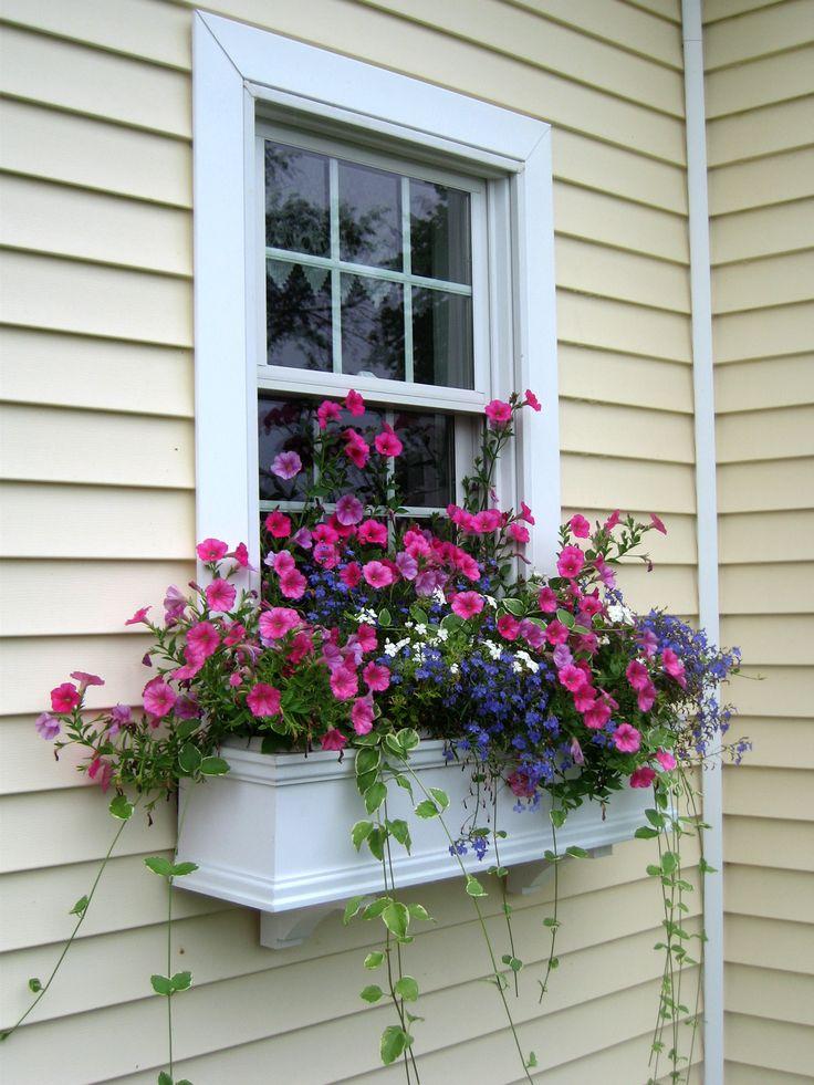 25 best ideas about window box planter on pinterest. Black Bedroom Furniture Sets. Home Design Ideas
