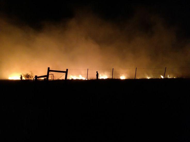 @bushlapa fire 10/6/17