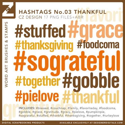 Hashtags No. 03 Thankful Brushes and Stamps - Photoshop Brushes