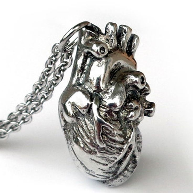 Anatomically Pendant Human Heart Necklace Science Biology Necklaces Antique Silver Jewelry Holiday Gift