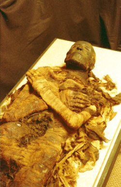 The mummy of Seti I - Pharaoh of Ancient Egypt, father of Rameses the Great.