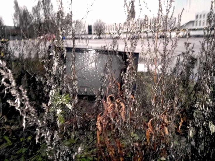 Joulu 2011