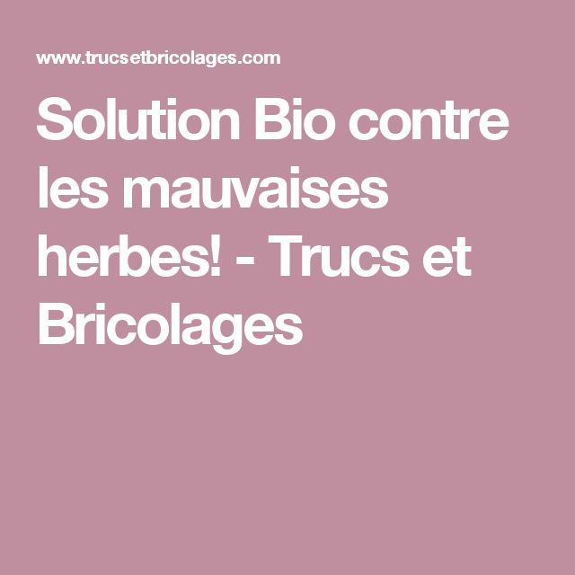 Solution Bio contre les mauvaises herbes! - Trucs et Bricolages