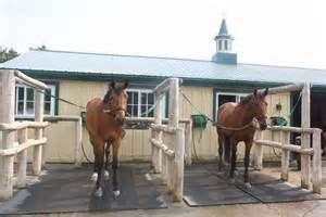 wash rack for horse ideas - Bing Images