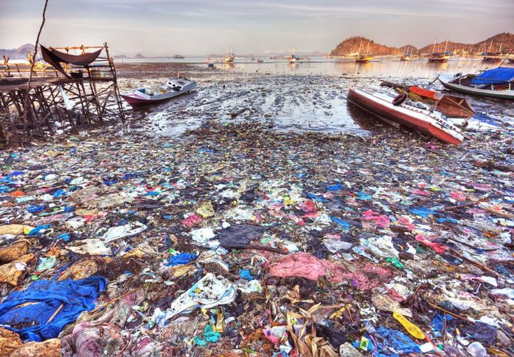Stacey Samuel- This article is about how about 50% of the plastic waste in the ocean originates in 5 countries. China, Indonesia, Philippines, Thailand and Vietnam.  These countries have underdeveloped waste management systems that have not been able to keep up.  Efforts are being made by both government agencies and large companies to improve the situation.