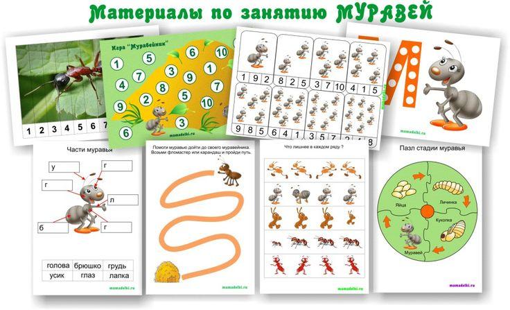 Gratis groot themapak over mieren voor kleuters