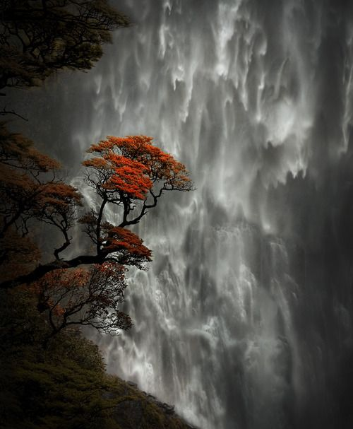 Incredible colors against the canvas of water...arw126kc135:    35PHOTO - HITTHEROAD - Devil's Punchbowl Falls, New Zealand